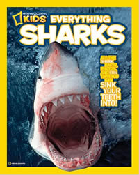 Image of over of Kids Everyting Sharks book